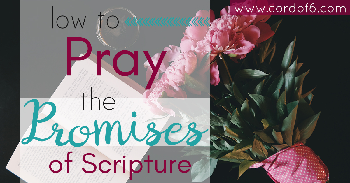 Here's a guide to learn how to pray the promises of Scripture. Don't let your fear of doing it wrong keep you from prayer.