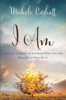 Do you feel the pressure to do more and be more? I Am by Michele Cushatt, reminds you that your identity is found in the God who chose you, sent you and promises to be with you no matter what.