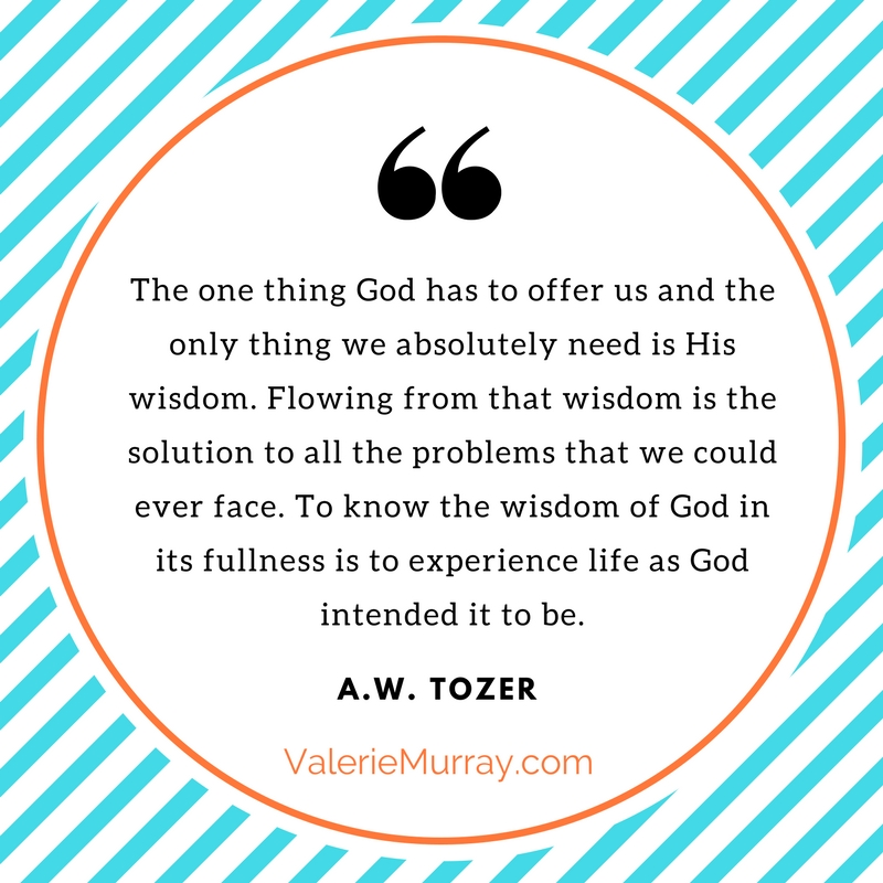 Do you want to know how to apply biblical truth and obtain God's wisdom in your life? The Wisdom of God by A.W. Tozer is an excellent book!