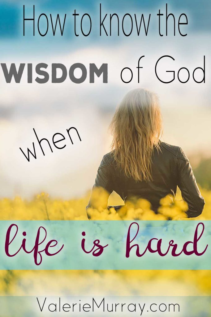 What do you do when you don't know what God wants you to do? How do we receive the wisdom of God when life is hard? Explore 4 ways to know God's wisdom.