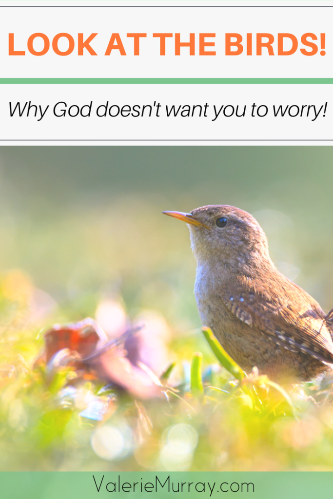 Do you worry about the unknown future?  Matthew 6:25 tells us 5 powerful reasons why God doesn't want you to worry about your life. Just look at the birds! #worry #lookatthebrids #Godwilltakecareofyou
