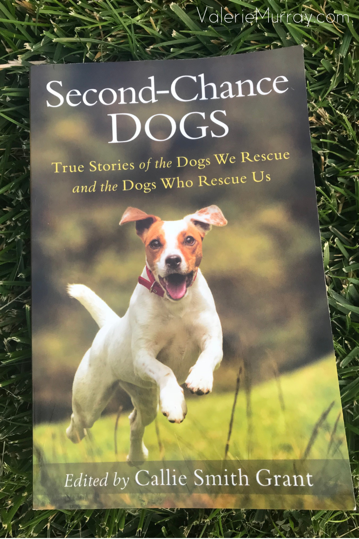 Second-Chance Dogs is a collection of true rescue stories spotlighting the beauty of reciprocal love between people and their dogs.